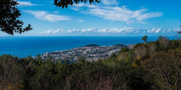 Funchal, Madeirra photo Bengt Nyman